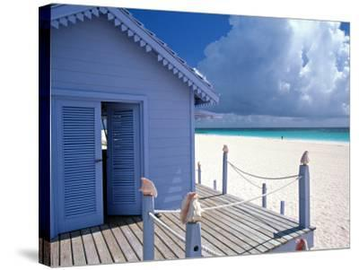 Providence Island, Bahamas, Caribbean-Peter Adams-Stretched Canvas Print