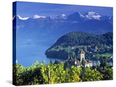 Spiez, Lake Thun, Switzerland-Peter Adams-Stretched Canvas Print