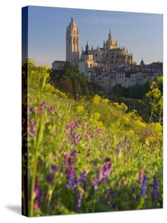 Segovia, Castilla Y Leon, Spain-Peter Adams-Stretched Canvas Print