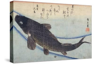Print of Carp in a Stream-Ando Hiroshige-Stretched Canvas Print