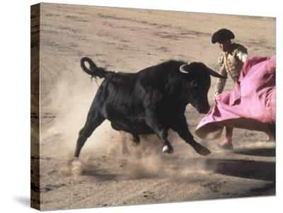 Matador with Pink Cape and Bull, Mexico-Edward Slater-Stretched Canvas Print