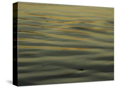 Sunlight Reflects off of Sand Ripples on a Tidal Flat in Tasmania-Jason Edwards-Stretched Canvas Print
