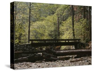 Footbridge over a Dry Stream in Yosemite-Marc Moritsch-Stretched Canvas Print