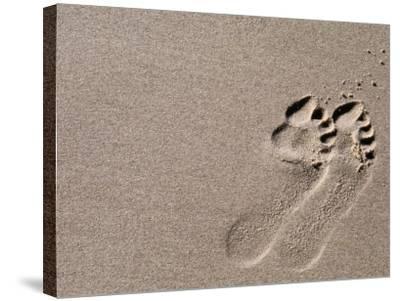 Footprints on Sand, Australia-Oliver Strewe-Stretched Canvas Print