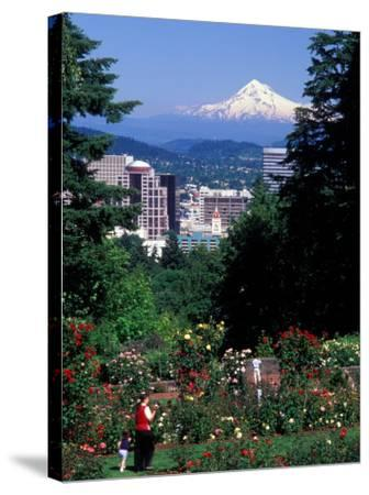 People at the Washington Park Rose Test Gardens with Mt Hood, Portland, Oregon, USA-Janis Miglavs-Stretched Canvas Print