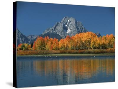 Mt. Moren, Oxbow Bend, Grand Tetons National Park, Wyoming, USA-Dee Ann Pederson-Stretched Canvas Print