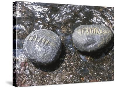 Rocks with the Words Imagine and Create in Water--Stretched Canvas Print