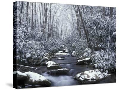 Cosby Creek in Winter, Great Smoky Mountains National Park, Tennessee, USA-Adam Jones-Stretched Canvas Print