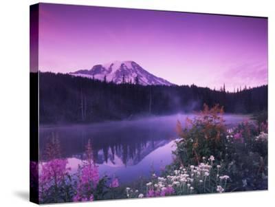 Reflection Lake with Summer Alpine Wildflowers, Mt. Rainier National Park, Washington, USA-Stuart Westmoreland-Stretched Canvas Print
