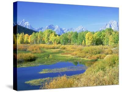 Teton Range, Grand Teton National Park, USA-Stan Osolinski-Stretched Canvas Print