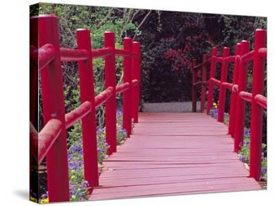 Red Bridge, Magnolia Plantation and Gardens, Charleston, South Carolina, USA-Julie Eggers-Stretched Canvas Print