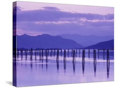 Pilings Reflecting in Calm Water, Pend Oreille River, Washington, USA-Jamie & Judy Wild-Stretched Canvas Print