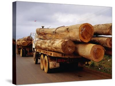Logging Trucks on Road, Bolaven Plateau, Laos-Woods Wheatcroft-Stretched Canvas Print