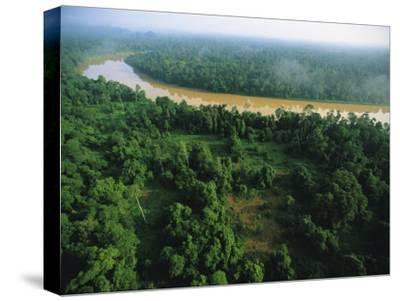 An Aerial View of Borneo Asian Elephant Habitat-Tim Laman-Stretched Canvas Print