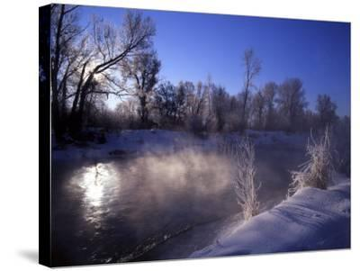 Rimed Trees and Morning Fog on Provo River, Wasatch Mountains, Utah, USA-Howie Garber-Stretched Canvas Print