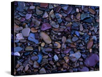 Gravel in Mountain Creek, Montana, USA-Jerry Ginsberg-Stretched Canvas Print