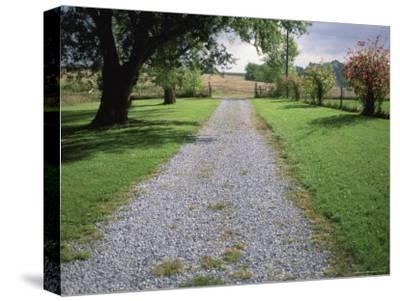 A Gravel Road Marks the Entrance/Exit to Waveland Farm in Nebraska-Joel Sartore-Stretched Canvas Print