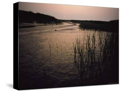 The Sun Rises over a Salt Marsh in Maine-Bill Curtsinger-Stretched Canvas Print
