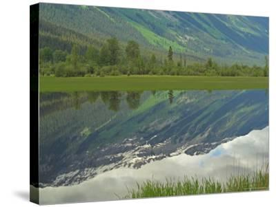 Moose Lake, Mt. Robson Provincial Park, Canada-Keith Levit-Stretched Canvas Print
