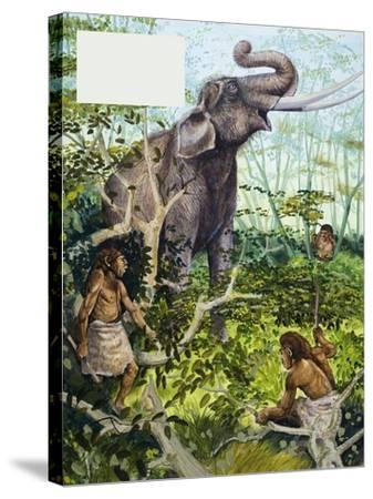 Stone Age Man and Elephant--Stretched Canvas Print