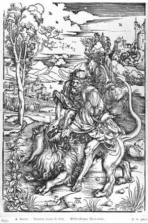 Samson Slaying the Lion, c.1496-98-Albrecht D?rer-Stretched Canvas Print