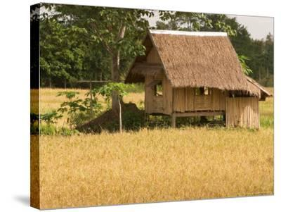 Hut in the Tambon Nong Hin Valley, Thailand-Gavriel Jecan-Stretched Canvas Print