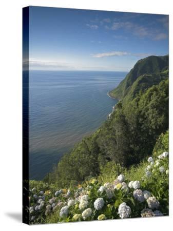 Coastline at Miradouro de Sossego Viewpoint, Sao Miguel Island, Azores, Portugal-Alan Copson-Stretched Canvas Print