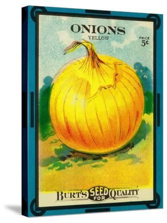 Onions Seed Packet-Lantern Press-Stretched Canvas Print