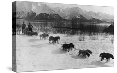 Dog Team Photograph - Alaska-Lantern Press-Stretched Canvas Print
