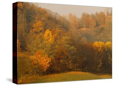 Morning View of Autumn Colors in the Jefferson National Forest-Raymond Gehman-Stretched Canvas Print