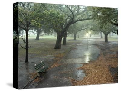 Rain Softly Falls on White Point Gardens-Rex Stucky-Stretched Canvas Print