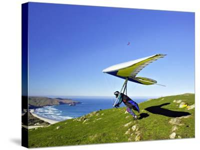 Hang Glider, Otago Peninsula, near Dunedin, South Island, New Zealand-David Wall-Stretched Canvas Print