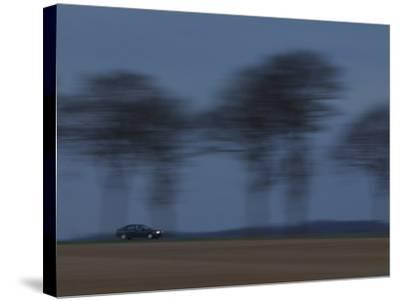 Motion Blur of Speeding Car on Tree-Lined Road in France--Stretched Canvas Print