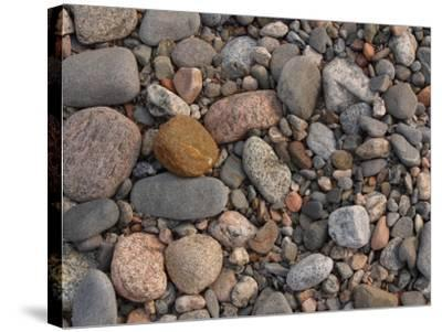 Variety of Stones and Pebbles on the Ground--Stretched Canvas Print