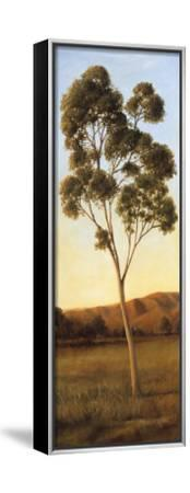 Lonely Eucalyptus I-Cory Steffen-Framed Stretched Canvas Print