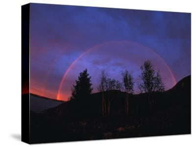 Rainbow over Trees, Northwest Territories, Canada-Nick Norman-Stretched Canvas Print