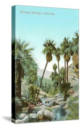 Oasis Near Borrego Springs, California--Stretched Canvas Print