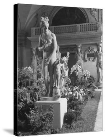 The Statue of Aphrodite and Eros in Louvre Museum During a Flower Show-Dmitri Kessel-Stretched Canvas Print