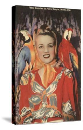 Lady with Macaws, Florida--Stretched Canvas Print