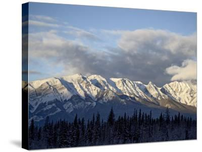 Bosche Range in Winter, Jasper National Park, Rocky Mountains, Alberta, Canada-James Hager-Stretched Canvas Print