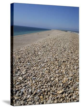 Chesil Bank, Dorset, England, United Kingdom, Europe-Pate Jenny-Stretched Canvas Print