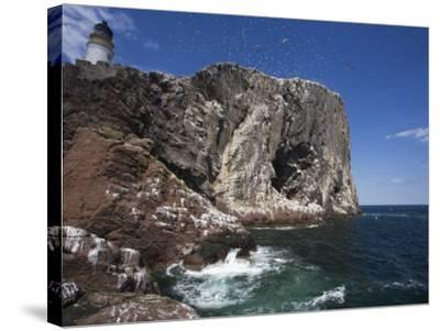 Bass Rock, Firth of Forth, Scotland, United Kingdom, Europe-Toon Ann & Steve-Stretched Canvas Print