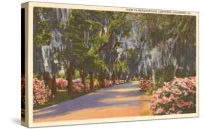Bonaventure Cemetery, Savannah, Georgia--Stretched Canvas Print
