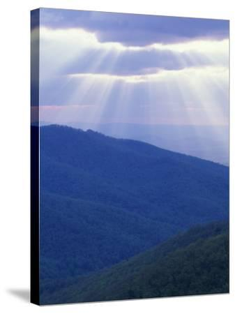 Sunrise over Buck Hollow, Shenandoah National Park, Virginia, USA-Charles Gurche-Stretched Canvas Print