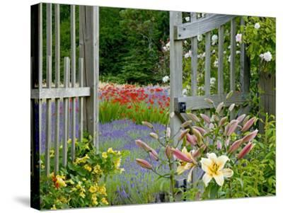 Garden Gate, Bainbridge Island, Washington, USA-Don Paulson-Stretched Canvas Print