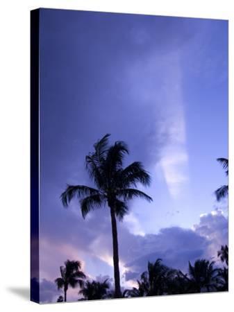Sunset, Captiva Island, Florida-Maresa Pryor-Stretched Canvas Print