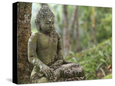 Tranquil Seated Buddha Statue in Bali's Lush Tropical Forest-xPacifica-Stretched Canvas Print