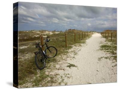 Path Leads to the Beach at St. George's Island, Florida-Stephen Alvarez-Stretched Canvas Print
