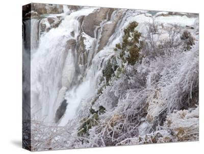 Winter Scene with Ice-Covered Plants in Front of Shoshone Falls-Darlyne A^ Murawski-Stretched Canvas Print