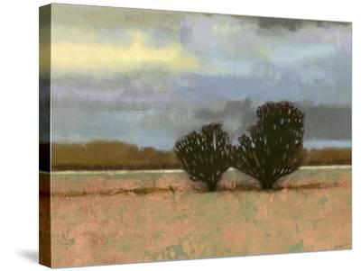 Approaching Storm I-Norman Wyatt Jr^-Stretched Canvas Print